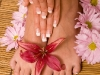 manicure-pedicure_zoom
